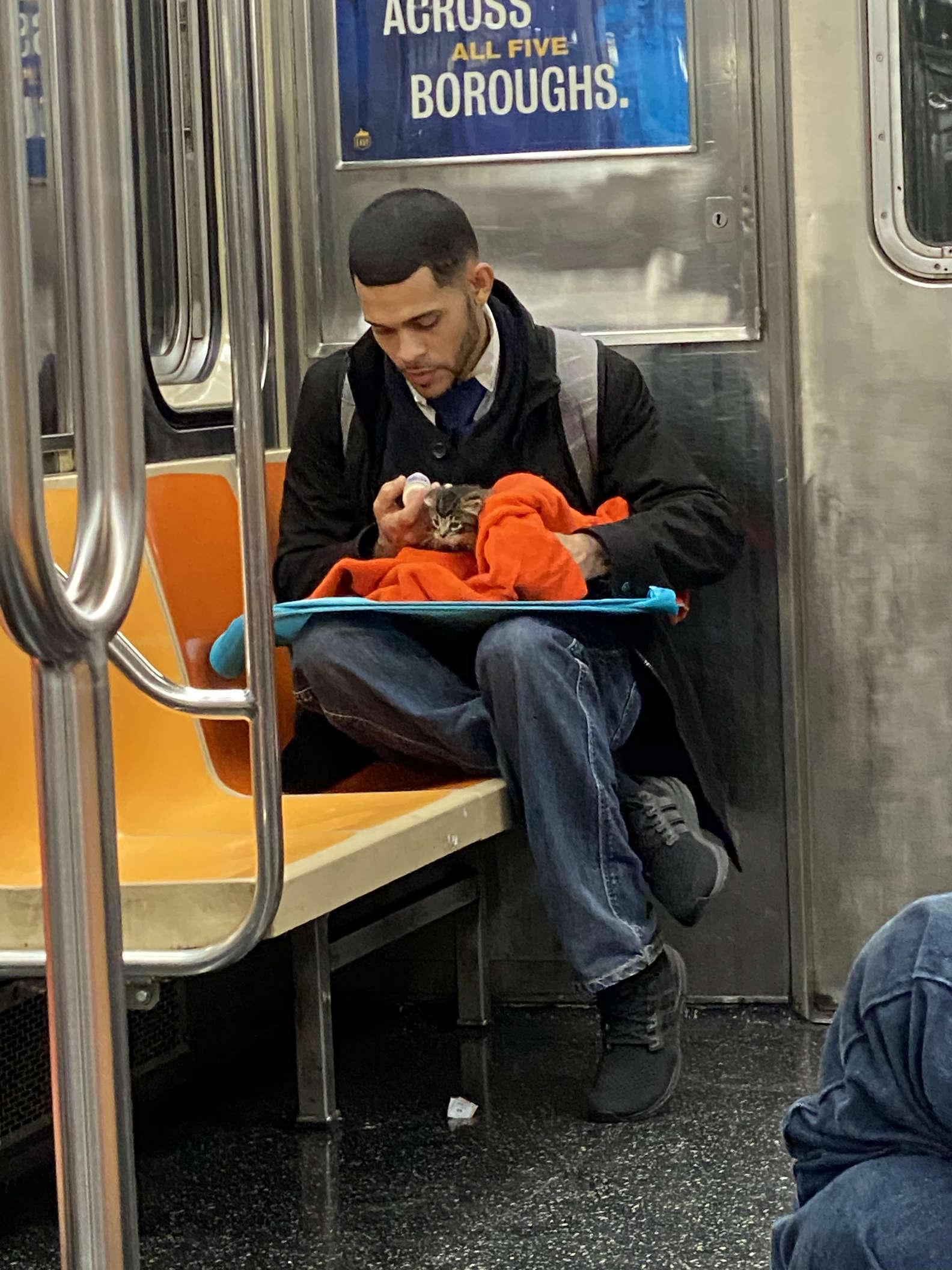 Man geeft kitten flesje op metro.