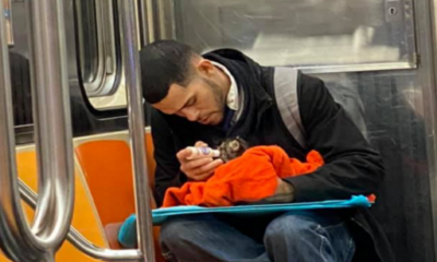 Man in metro New York met kitten op schoot.